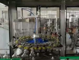 18头全自动翻转式冲瓶机,自动控瓶机