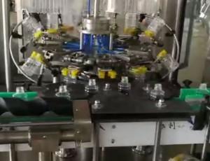 12头全自动翻转式冲瓶机